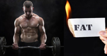 lose fat without losing muscle